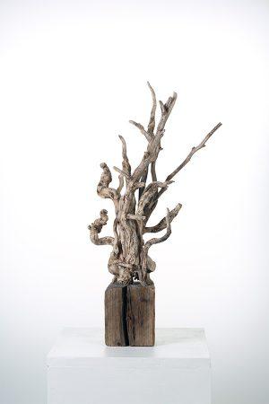 Drift Tree
