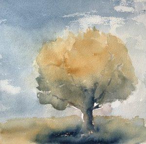 Träd morgon